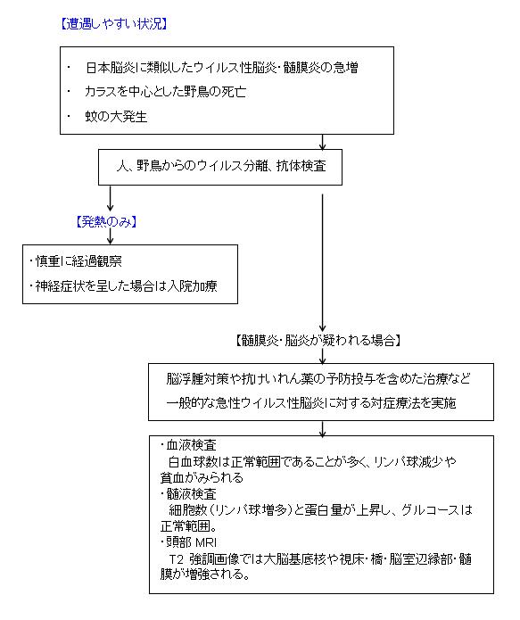 chart_20091105141339