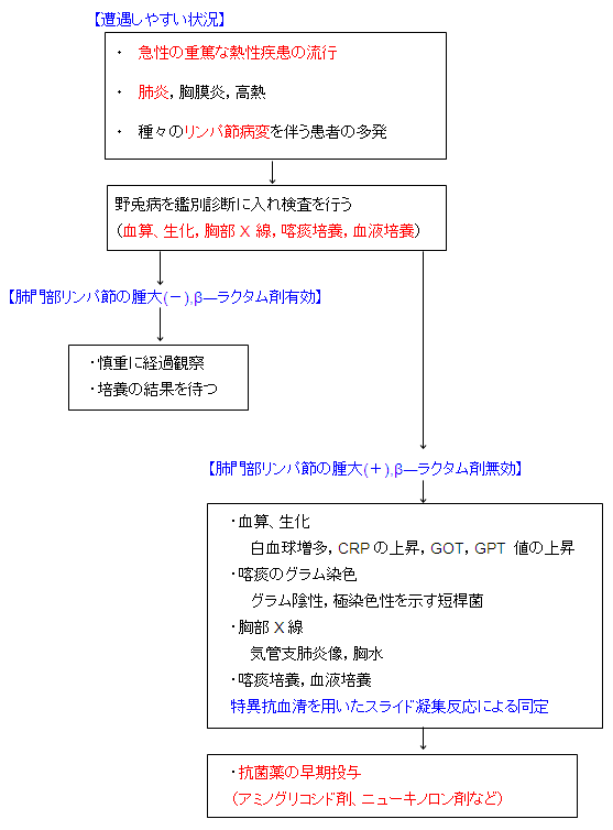 chart_20091113020432