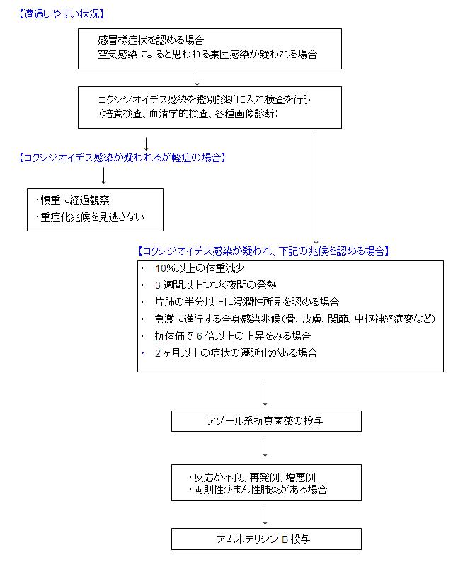 chart_20091217081711